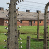 Auschwitz-Birkenau : Incompletion in Oscweicim, a poem: Perception  Deception  Regulation   Explanation   Oration   Vindication   Humiliation    Beration   Interruption   Isolation   Emigration   Irresolution   Inaction   Evasion   Construction   Exhaustion   Destruction   Ruination   Privation   Ration   Elimination   Cremation   Eradication   Extermination   Liberation   Aryanation   Anynation   Imagination